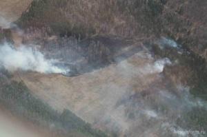 Photo of В Башкирии журналисты с километровой высоты зафиксировали первый лесной пожар – видео