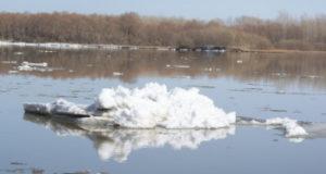 В Стерлитамаке уровень воды в Белой за сутки вырос на 18 сантиметров