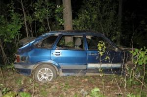 В Башкирии лось стал причиной смертельной аварии