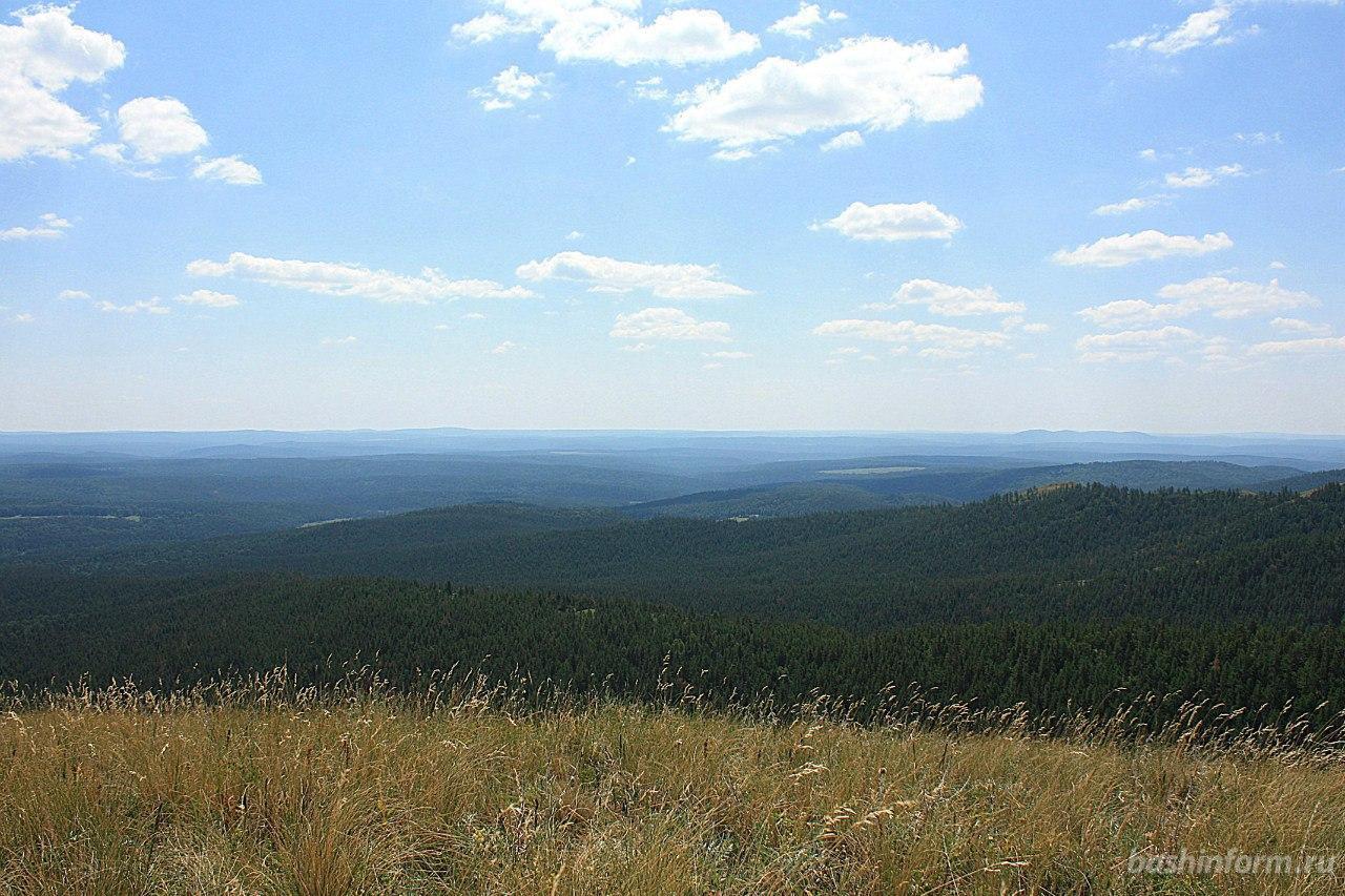 В республике выявлено 1363 нарушения земельного законодательства - Росреестр по Башкирии