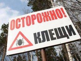 В Башкортостане заработала «горячая линия» по профилактике клещевого энцефалита