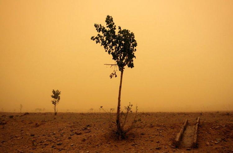 Photo of Климатологи спрогнозировали убийственную для человечества жару