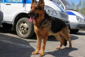 В Башкирии задержали мужчину, который угрожал взорвать дом