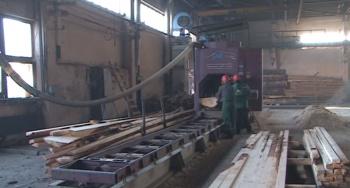 Photo of В Башкирии на предприятии по переработке леса стало возможно безотходное производство