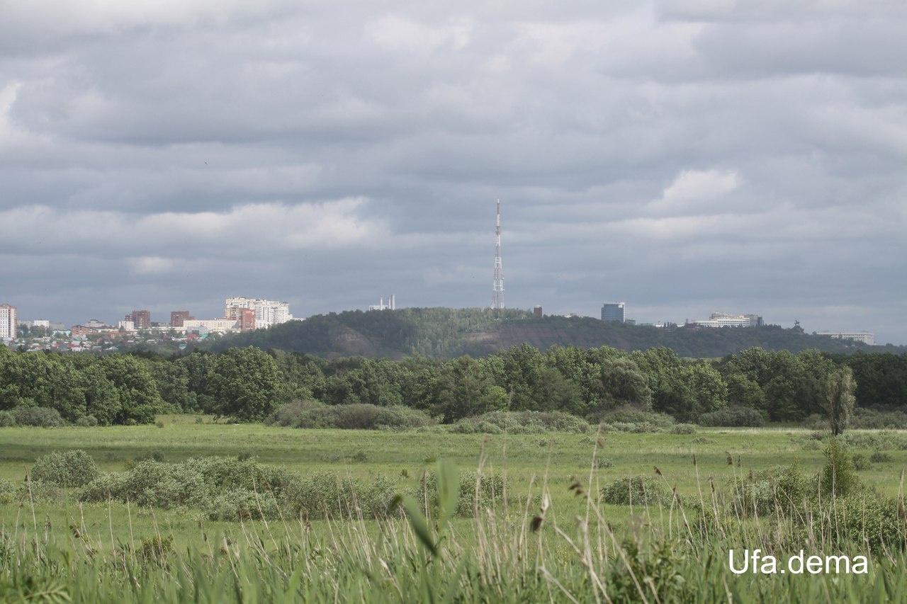 Photo of Уфимские орнитологи предлагают придать Дёмскому болоту статус особо охраняемой природной территории