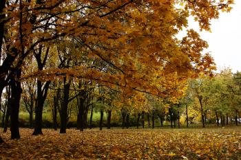 Photo of В Башкирии в конце октября температура воздуха будет ниже нормы