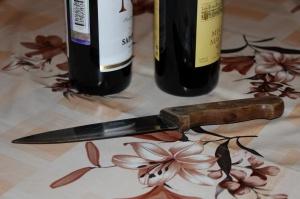 Photo of Житель Башкирии устроил в доме массовую поножовщину: две женщины убиты, еще двое участников застолья госпитализированы