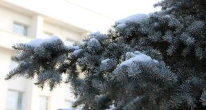 В Башкирии прогнозируется похолодание до  24 градусов