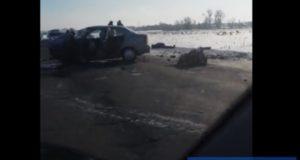 Смертельная авария на трассе Нефтекамск Арлан: столкнулись две легковушки, единственный человек умер