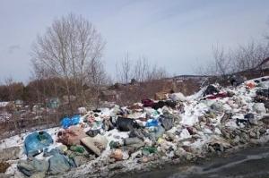 Photo of Ликвидации нелегальной мусорной свалки под Уфой достигнули через Верховный суд РБ