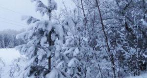 В начале недели обитателей Башкирии ожидают сильные морозы