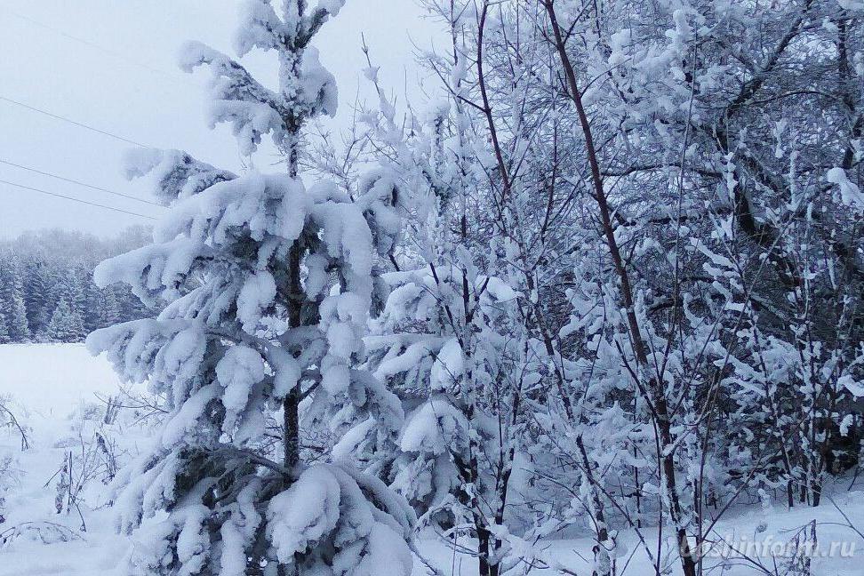 Photo of В начале недели обитателей Башкирии ожидают сильные морозы
