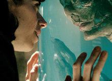 Форма воды очутилась самым кассовым наилучшим фильмом за 5 лет