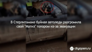 Photo of В Стерлитамаке буйная автоледи разгромила собственный «Матиз» топором из-за эвакуации
