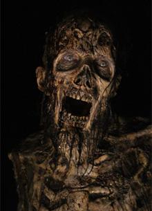 Photo of Показатель «Ходячих мертвецов» свалился до уровня первого сезона