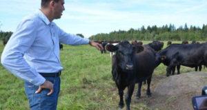 В РБ каждый год раскрывается 250 фермерских хозяйств