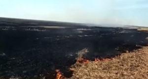 Под Стерлитамаком горят поля