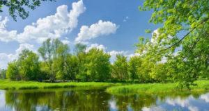 Синоптики: В Башкирию придет долгожданное лето