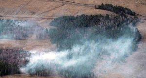 В лесах Башкирии в предстоящие выходные прогнозируется средний класс пожарной опасности