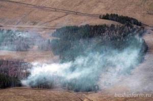Photo of В лесах Башкирии в предстоящие выходные прогнозируется средний класс пожарной опасности