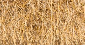 В Башкирии девочка погибла, упав со стога сена