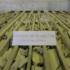 Башкирия включила новое производство соды в список приоритетных проектов