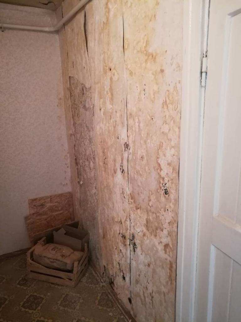 В Стерлитамаке инвалидам по зрению выдали квартиру в ужасном состоянии: с плесенью и грибком на стенах