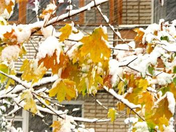 В Башкирии прогнозируют холодные выходные со снегом