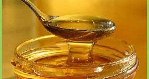 В Башкирии в план приватизации включили стерлитамакское предприятие по пчеловодству