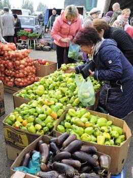 Photo of В Стерлитамаке состоится сельскохозяйственная ярмарка ко Дню Республики. Обзор цен