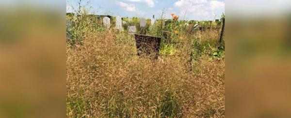 Photo of Прокуратура запретила мэрии Уфы строить новое кладбище