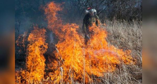 Photo of МЧС России по Республике Башкортостан призывает жителей Башкирии воздержаться от сжигания мусора, травы и разведения костров