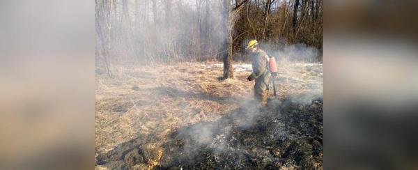 В Уфе спасатели предотвратили природный пожар0