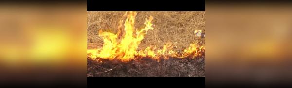Photo of Управление Россельхознадзора по Республике Башкортостан в связи с наступлением пожароопасного периода и проведением весенне-полевых работ информирует — новости Мелеуза