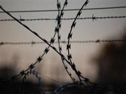 В Госдуме обсуждают уголовную ответственность за антинаучные рекомендации0