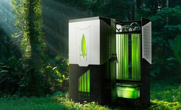 Биореактор на водорослях поглощает CO2 эффективней деревьев0