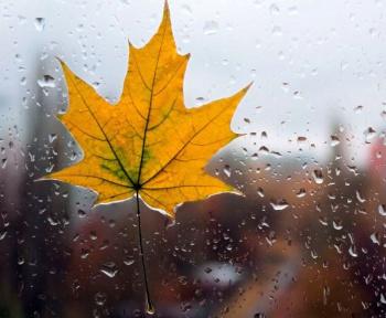 Синоптики рассказали о погоде в Башкирии на продолжительные выходные0