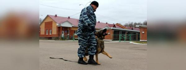 Собака-полицейский: Как живут и работают хвостатые стражи порядка в Башкирии15