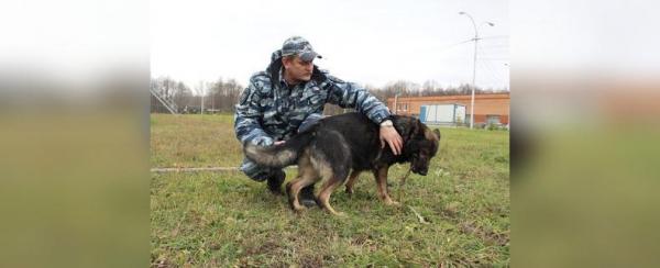 Собака-полицейский: Как живут и работают хвостатые стражи порядка в Башкирии0