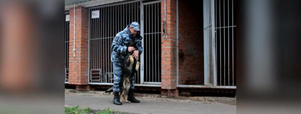 Собака-полицейский: Как живут и работают хвостатые стражи порядка в Башкирии6