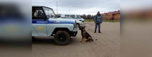 Собака-полицейский: Как живут и работают хвостатые стражи порядка в Башкирии17