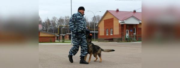 Собака-полицейский: Как живут и работают хвостатые стражи порядка в Башкирии14