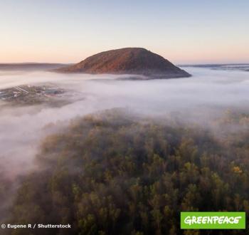 Photo of Greenpeace России и Союз охраны птиц России выступили за сохранение шихана Куштау