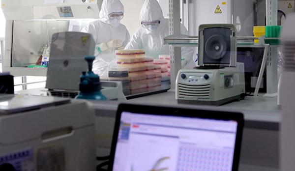 Photo of Наука предлагает новые способы борьбы с коронавирусом